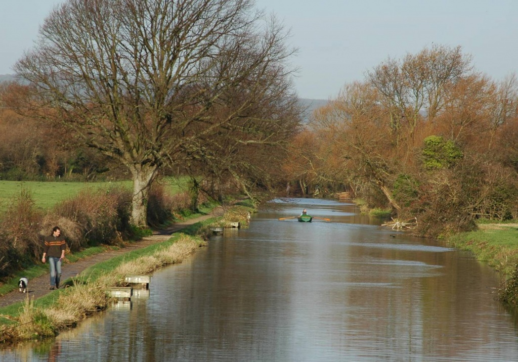 Chichester Canal rowing boat hire