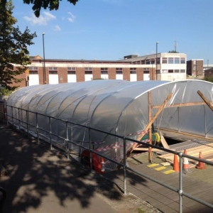 polytunnel-in-situ